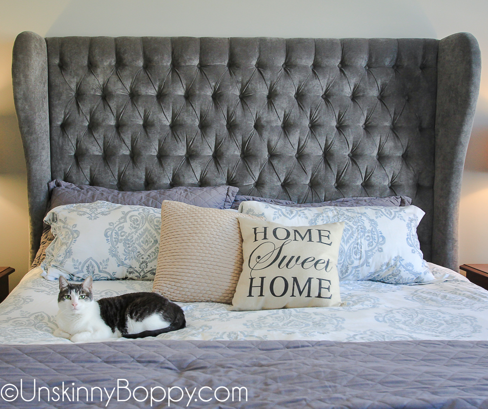 Pretty grey cat sitting on master bed with tufted grey headboard