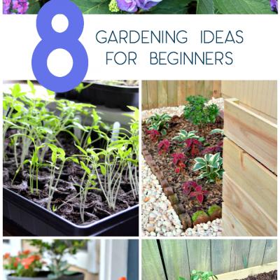 8 Easy Gardening Ideas for Beginners