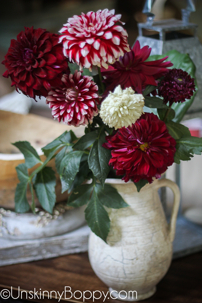 Dinnerplate Dahlias in a white pitcher