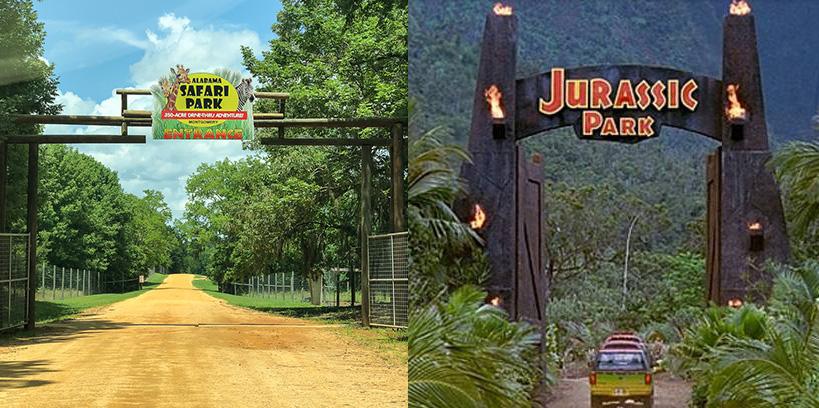 Alabama Safari Park vs jurassic park