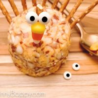 EASY TURKEY CHEESEBALL RECIPE-5