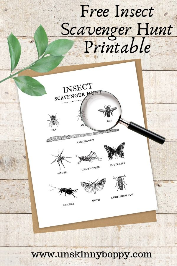 graphic relating to Outdoor Scavenger Hunt Printable identify Summer time Enjoyable Collection Insect Scavenger Hunt No cost Printable