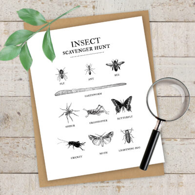 This Insect Scavenger Hunt is so much fun! You'll love the ease of this free printable and the kids will love finding the bugs!