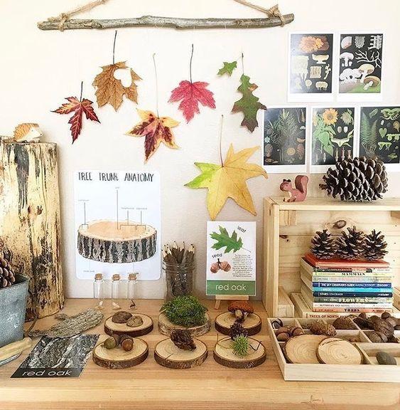 Autumn theme nature station